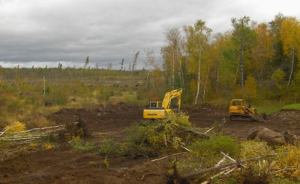 White Lake Photo 2 Site Prep RS